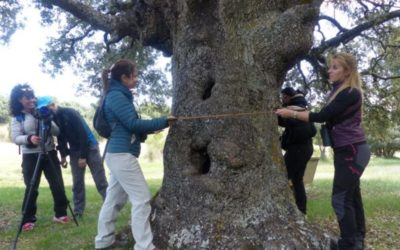 La Ruta del Vino Ribera del Duero incrementa su oferta turística